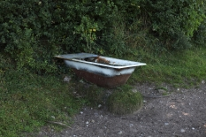 Repurposed bathtub just south of site of discovery of the Pallasboy Vessel