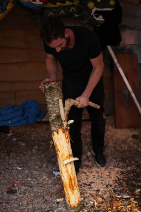 Figure 5: Me using the axe to slide off the bark. NB: the red and orange staining in contrast to the fresher white wood. Photo: Brian Mac Domhnaill.